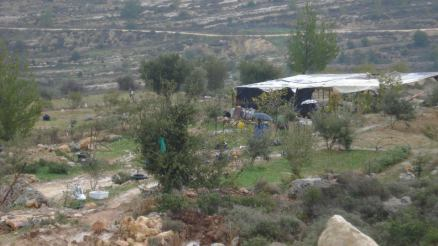 Al-Walaja Hero Palestine Stanito