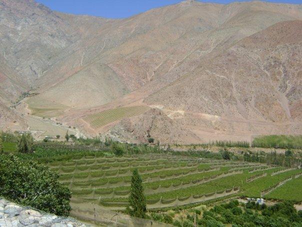 Valle del Elqui 2