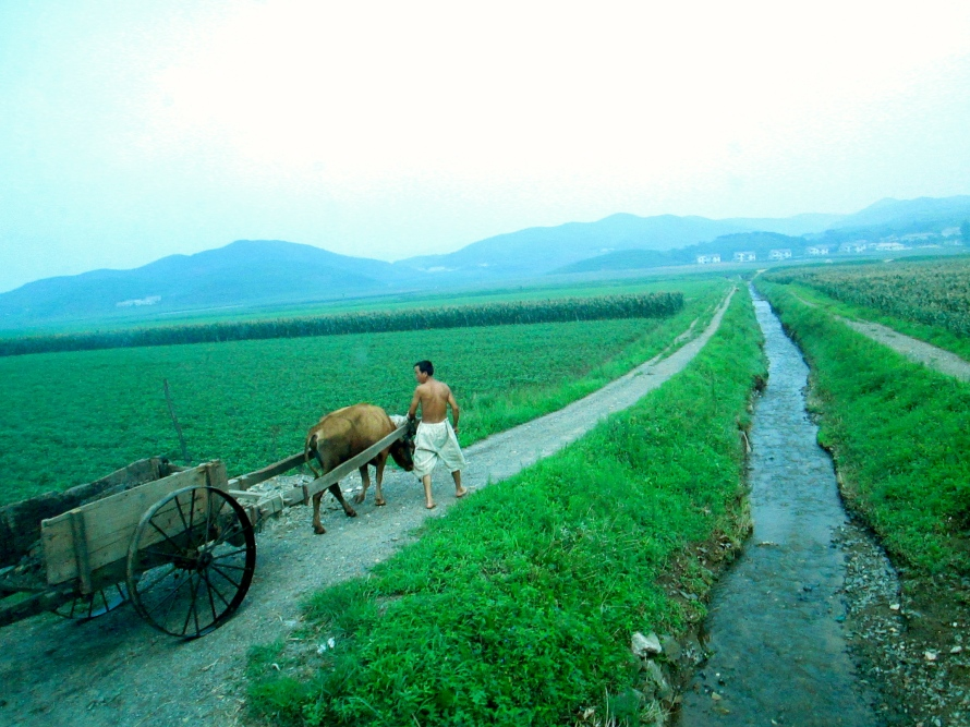 North Korean countryside on my way to Kaesong.