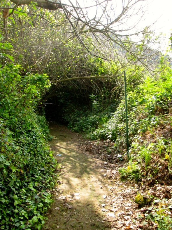 Sybille path 2