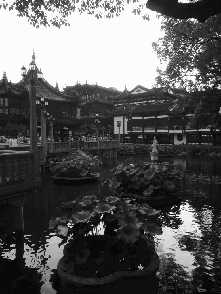 Shanghai Yu Yuan Garden Stanito