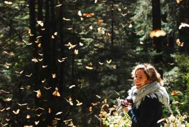 Stanito and Monarch Butterflies