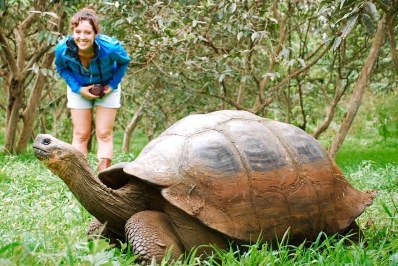 giant_tortoise_galapagos_stanito_1024