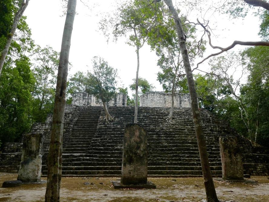 walking_trees_calakmul_mexico_stanito