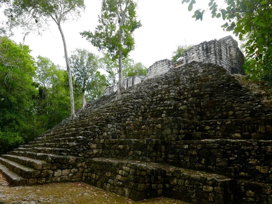 walking_trees_calakmul_mexico_stanito_1