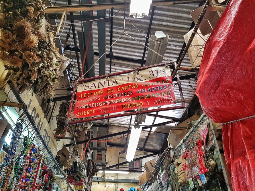 mexico_city_witchy_creepy_mercado_sonora_stanito_6